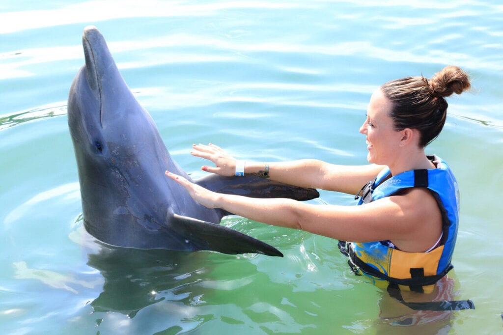 girl dancing with dolphin and laughing in Cabo San Lucas, Mexico