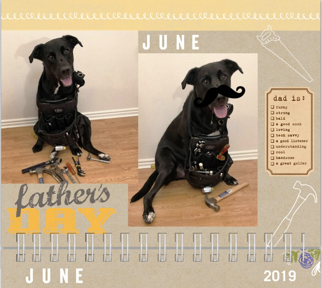 Dog calendar 2019 dog wearing tool belt with tools. Dad is sign, saw and hammer, father's day June
