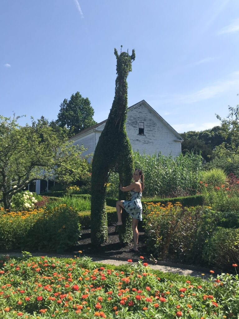 girl hugging giraffe-shaped bush at a topiary garden