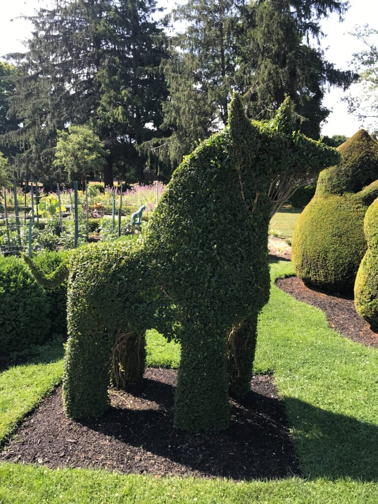topiary garden, unicorn shaped bush