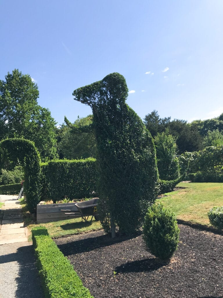 topiary garden, t-rex shaped bush