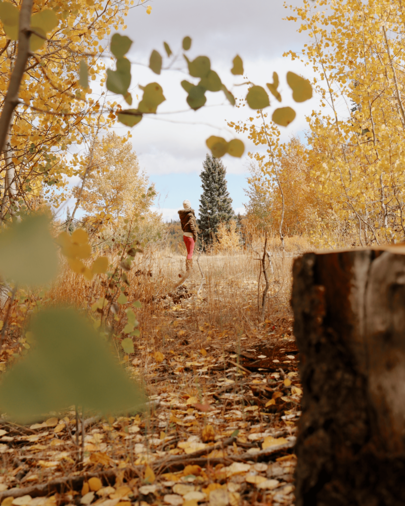 girl standing in the forest with fall leaves
