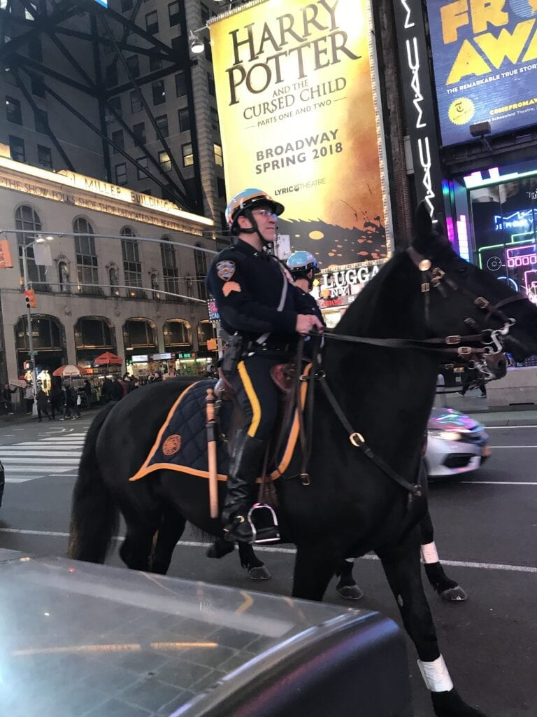 Policeman on horse in New York City