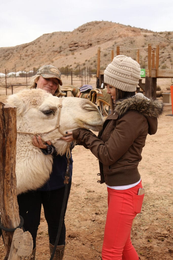 girl and camel