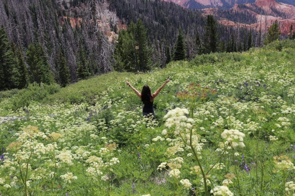 Girl in the mountains with arms up in wild flowers