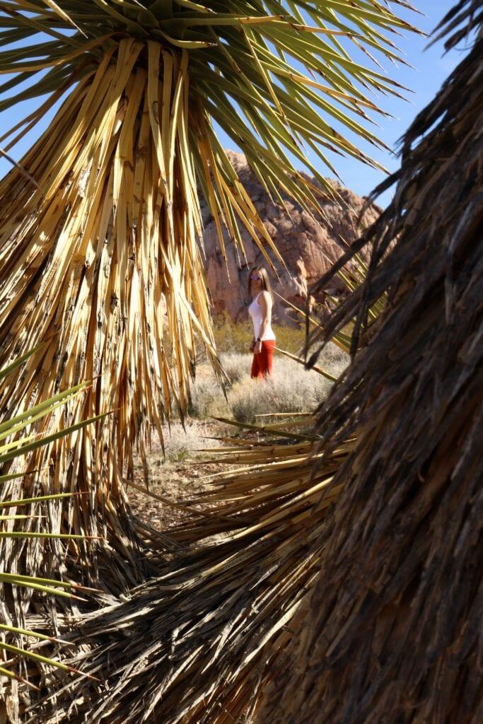 girl through joshua trees with mountians
