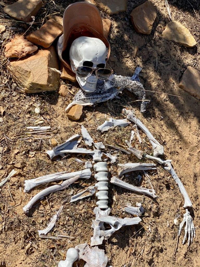 jones bones