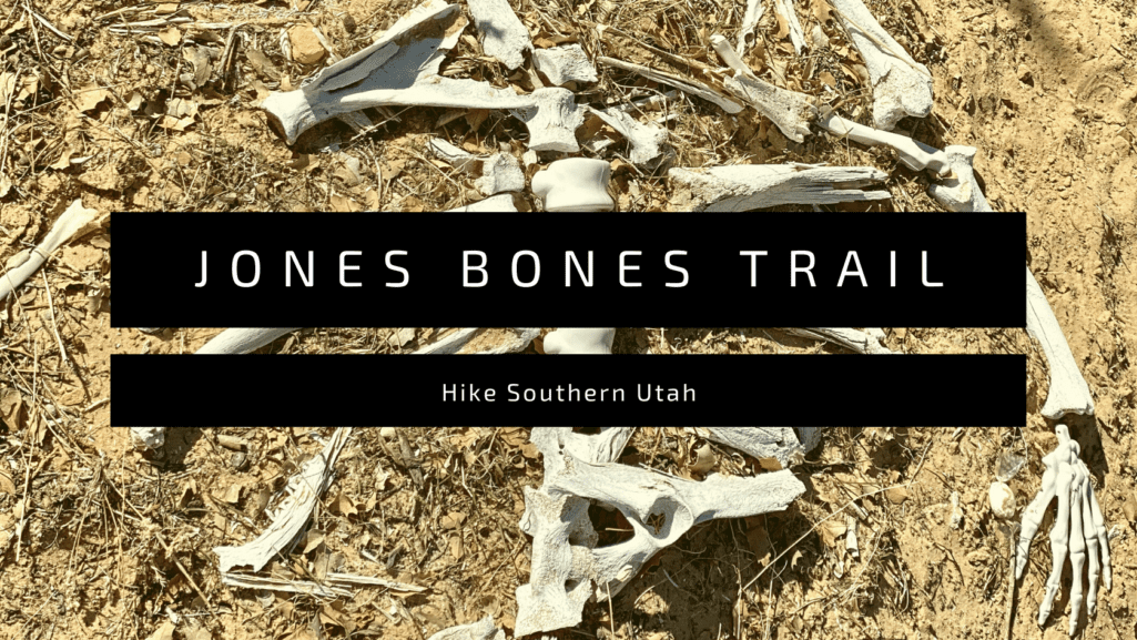 jones bones trail